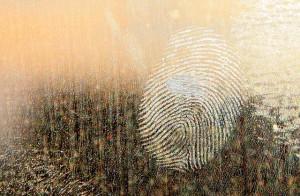 Impronte digitali (1)