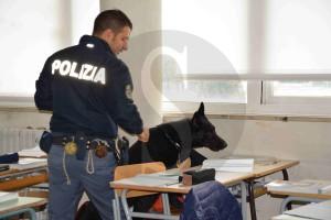 Polizia Ragusa Cane scuola