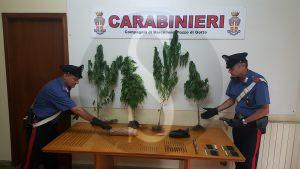 droga_carabinieri_Barcellona_Sicilians