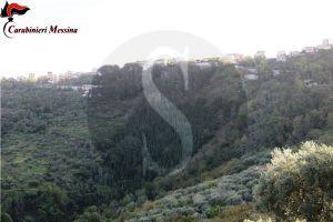 carabinieri_truffa_agea2_sicilians