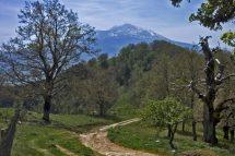 sentiero con etna sullo sfondo