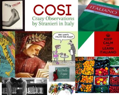 COSI language collage