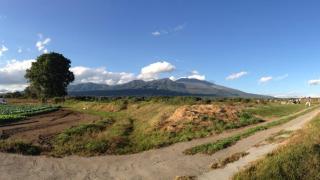 週末、浅間山でも見に行ってみる?ココラデ(長野県御代田町)
