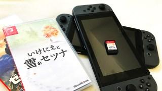 Nintendo Switchソフトをダウンロードできる本体は1台のみ!兄弟家族で使うので物理的にソフトを買う