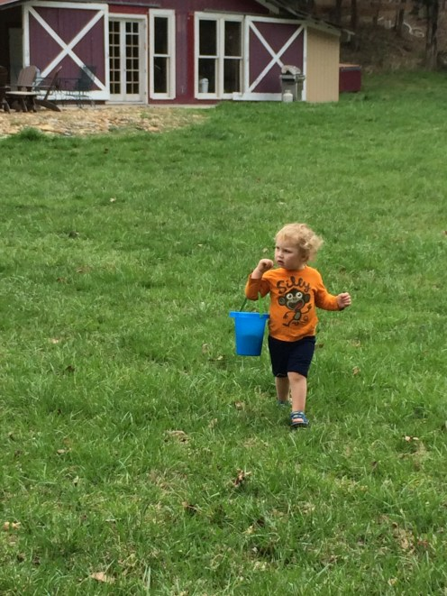 Searching high and low for easter eggs on the lawn.