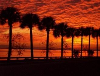 Tampa, FL, December, 2007