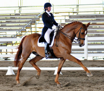 International Dressage rider Suzanne Dansby Bollman and her equine partner Cooper, an 18.3 hand Holsteiner gelding, have returned to the Grand Prix following an injury that put Cooper on the sidelines three years ago.  Bollman calls Cooper's return a miraculous event and they will compete at The Georgia Dressage Southern shows and the Raleigh CDI.  Photo courtesy of Robert Cieszenski of WNC Photography