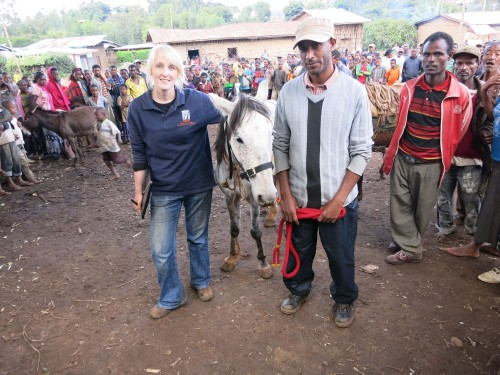 Ashleigh Brown conducting welfare assessment in Ethiopia
