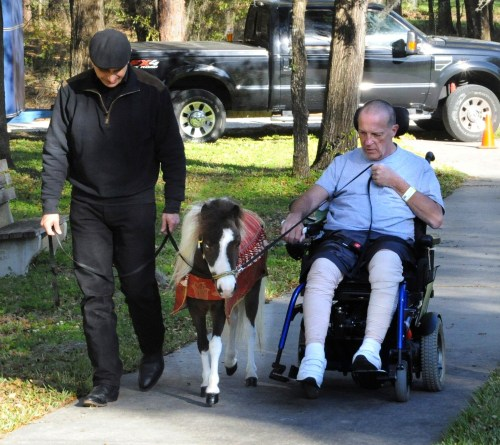 John LeCain, a pastor from New York, is learning to operate an electric wheelchair while therapy horse Wakanda practices adjusting her speed to walk with him at the University of Florida Health Rehab Hospital (formerly Shands Rehab Hospital) in Gainesville, Florida.