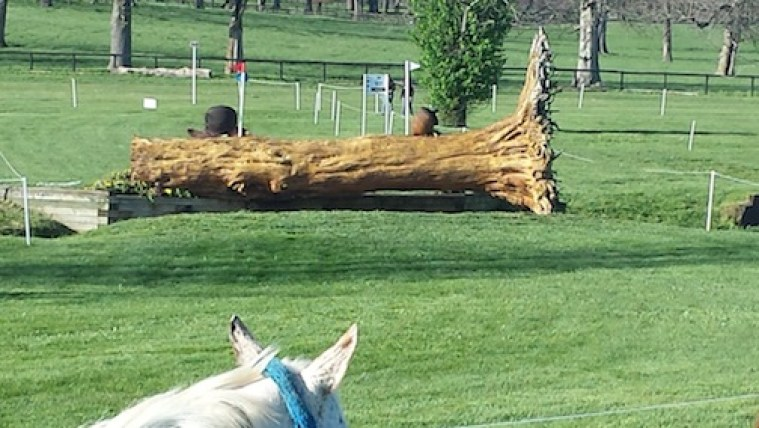 """Fence 20, which was a 3'6"""" fallen tree, seemed imposing, yet on Saturday the horses jumped it like a cross rail. (Photo courtesy of Rolex)"""