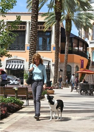 Marti and Lark walking in City Place in West Palm Beach, Florida, working on their Canine Good Citizen.