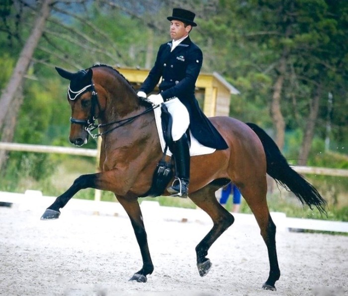 """Jaime truly represents the """"world"""" of dressage. Photo courtesy of Myriam Ranchon"""