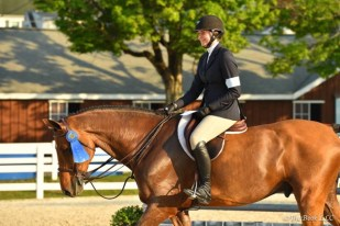 Cocopop and Kate winning Section C of the Pessoa/USEF Medal at Devon Photo by The Book LLC