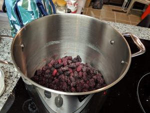 Photo of the author's soup pot full of frozen blackberries being heated into a suitable pie filling.