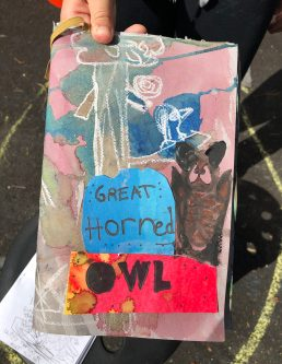 GreatHornedOwl_cover