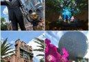 Detalles anunciados sobre  entretenimiento, tiendas y atracciones disponibles en Disney World al reabrir