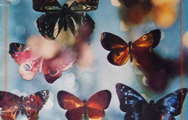 Las cien mariposas…[1974]
