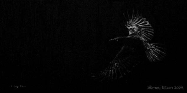 Title: As the Raven Flies, Artist: Sidney Eileen, Medium: oils on canvas board