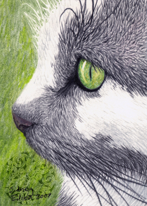 Title: Black, White, & Green ACEO, Artist: Sidney Eileen, Medium: colored pencil on paper