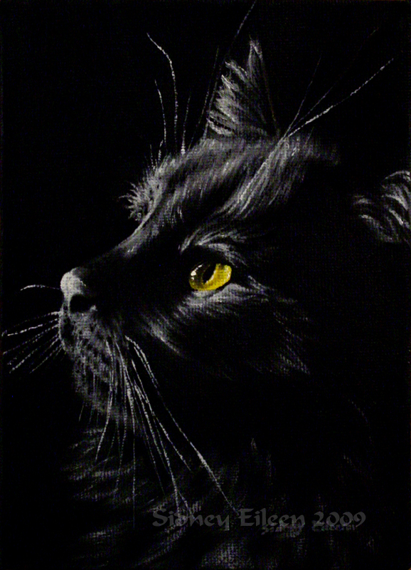 Title: Ringo, Artist: Sidney Eileen, Medium: oils on canvas board