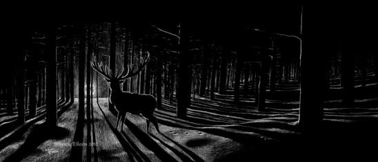 Title: The Longest Night, Artist: Sidney Eileen, Medium: white pencil on black paper