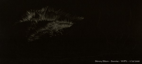 How to Draw Fur in Colored Pencil on Black Paper, by Sidney Eileen