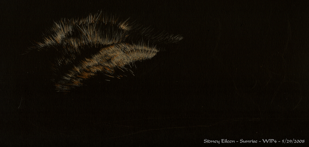 how to draw fur in colored pencil on black paper by sidney eileen
