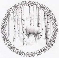 Title: Birch Wolf, Artist: Sidney Eileen, Medium: colored pencil on paper