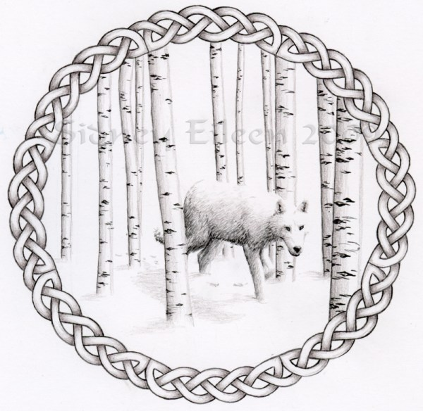 Title: Birch Wolf, Artist: Sidney Eileen, Medium: colored pencil on paper