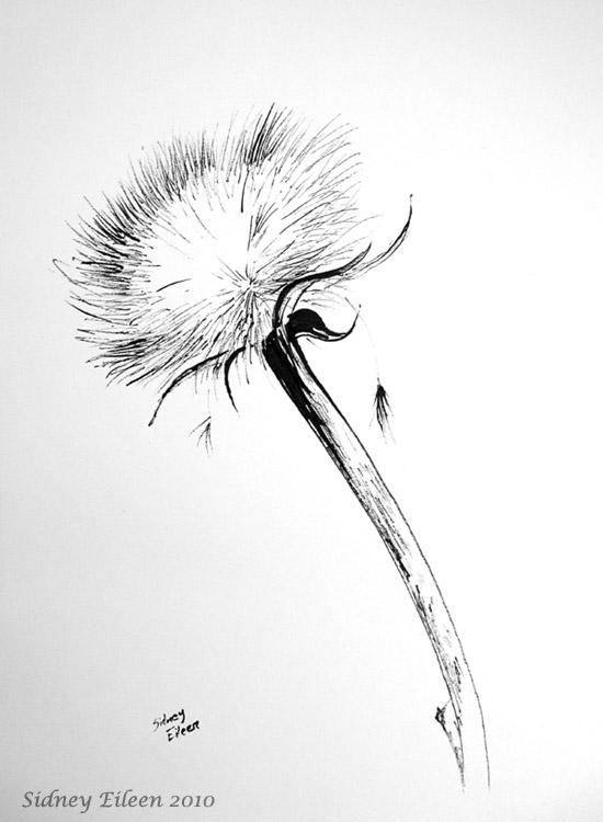 Title: Dried Artichoke, Artist: Sidney Eileen, Medium: sumi ink on paper