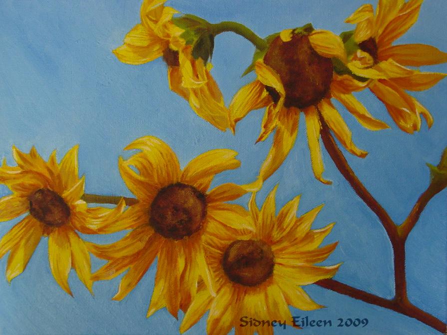 Title: Sunflowers in Daylight, Artist: Sidney Eileen, Medium: oils on canvas board