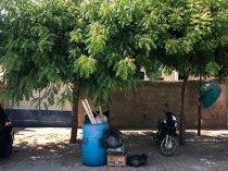 Árvores-tomam-a-frente-do-posto-de-saúde