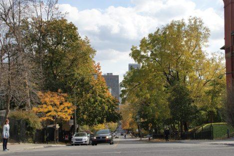 Avenue des Pins / Rue Peel
