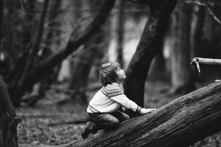 enfant bois