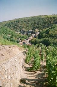 8835019 - La ViaRhôna - restos, france, europe, autriche, a-faire