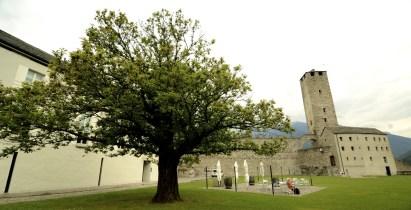 DSC_6986 - Bella vita dans le Tessin - suisse, europe, a-faire