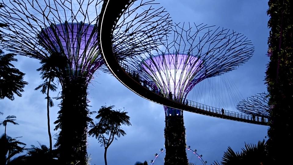 4 cafés à Singapour - singapour, cafes-restos, cafes, asie, a-faire