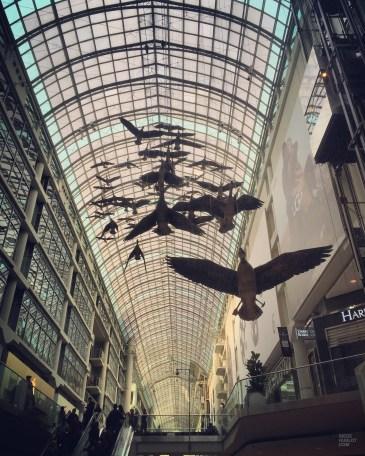 IMG_5574 - Quoi faire à Toronto - ontario, hotels, canada, cafes-restos, amerique-du-nord, a-faire