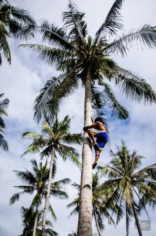 palawan-5 - Paradisiaque Palawan - philippines, asie, a-faire