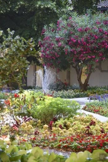 DSC_6436 - Belle Provence - france, europe, featured, destinations