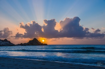 socotra-4698 - L'île de Socotra, le dernier paradis perdu! - yemen-asie, asie, a-faire