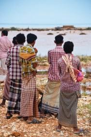 socotra-5243 - L'île de Socotra, le dernier paradis perdu! - yemen-asie, asie, a-faire