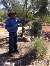 Jardinier - Westward Look Wyndham - Tout sur Tucson - Amérique, États-Unis, Arizona