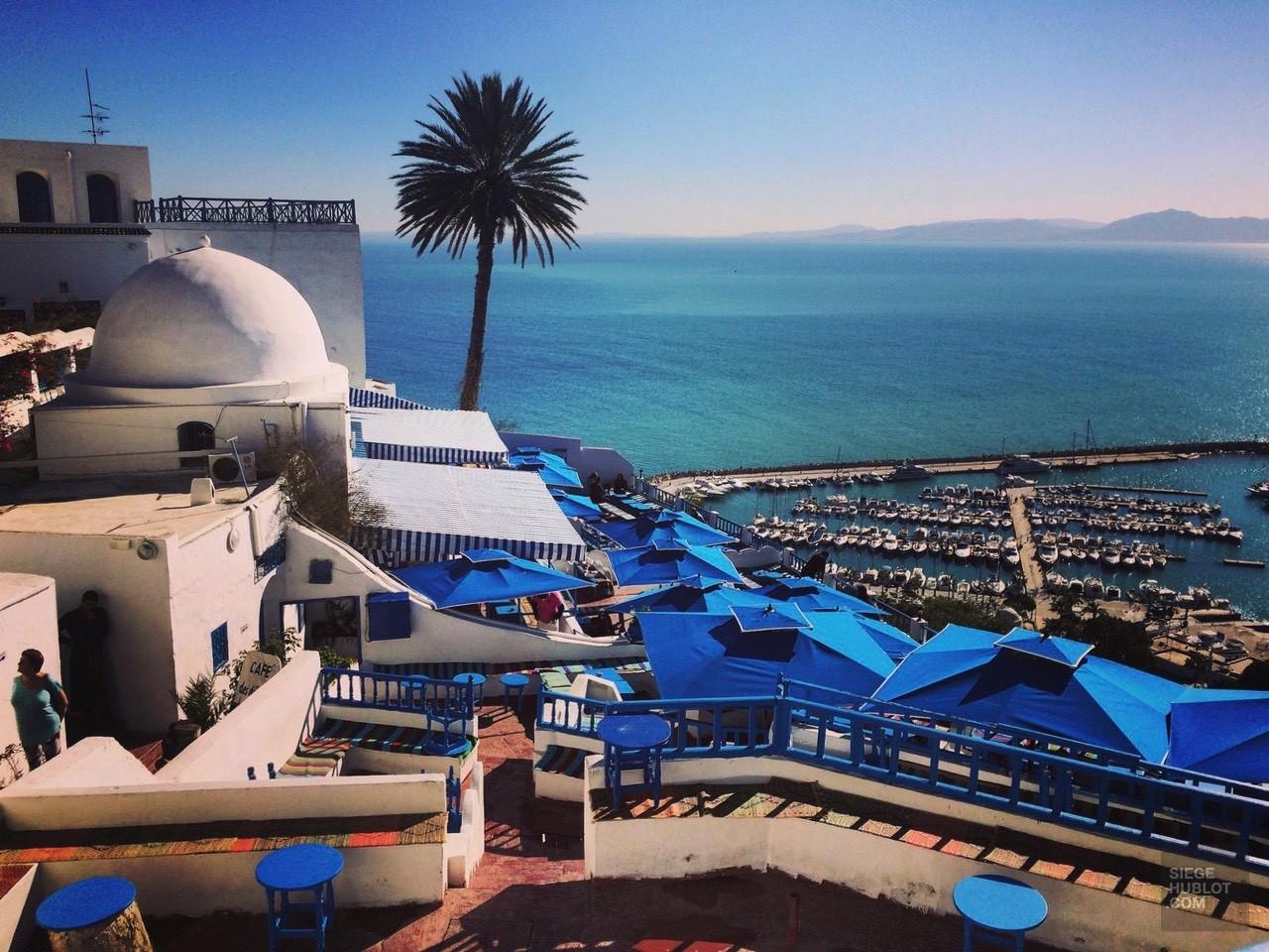 sidi bou said mer café des délices - Tunisie, de la mer au désert - Afrique, Tunisie