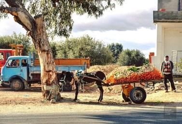 vendeur légumes - Tunisie, Afrique - Tunisie, de la mer au désert - Afrique, Tunisie
