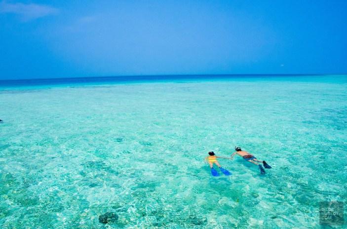 apnee plongee - Les Maldives - Les Maldives, le grand luxe en plein ocean Indien. - Asie, Maldives