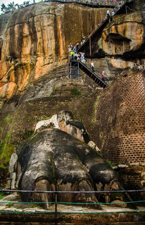 patte lion - vieilles cites, temples et monasteres - Sri Lanka, au cœur de l ile - Asie, Sri Lanka