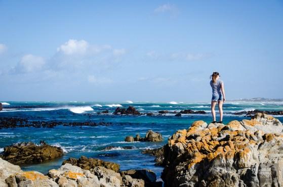 cape agulhas - Ocean Atlantique vs Ocean Indien - Dose d adrenaline en Afrique du Sud - Afrique, Afrique du Sud