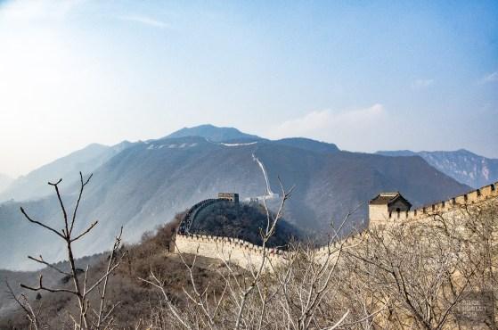 grande muraille chine arbres - Mutianyu - La Grande Muraille de Chine, un lieu mythique - Asie, Chine