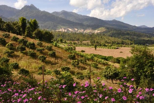 Vue magnifique sur les montagnes - Province de Mae Hong Son, Thaïlande du Nord - Pai - Asie, Thaïlande